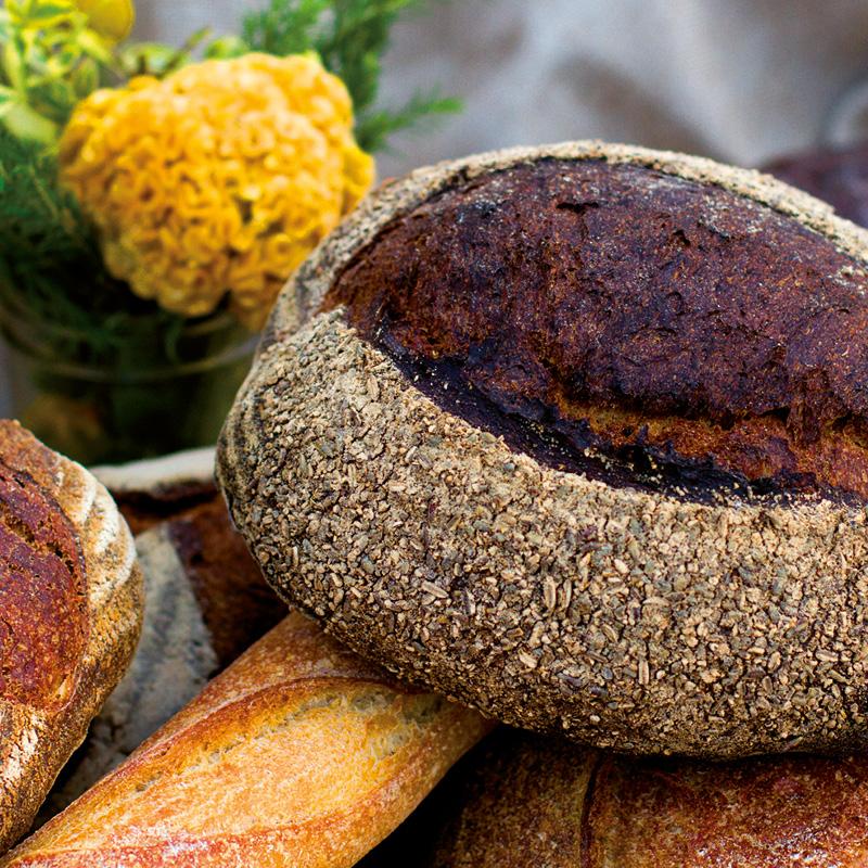 BayerBau Gartenofen Brot backen